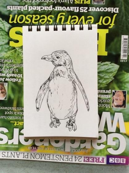 ペンギン_b0132338_11031116.jpg