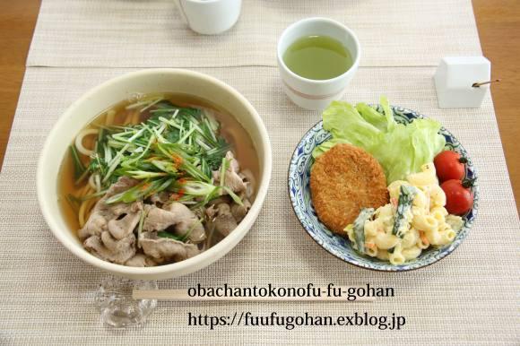 豚しゃぶと水菜うどん&おじさん作にしん蕎麦_c0326245_11252205.jpg