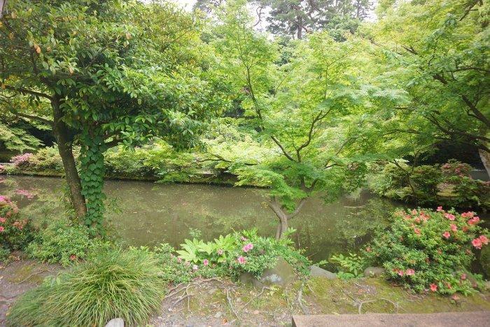 尾山神社_c0112559_09121799.jpg