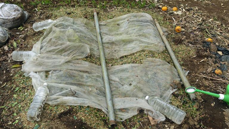 1回目の地這い胡瓜とトウモロコシの種まき3・18_c0014967_8552312.jpg