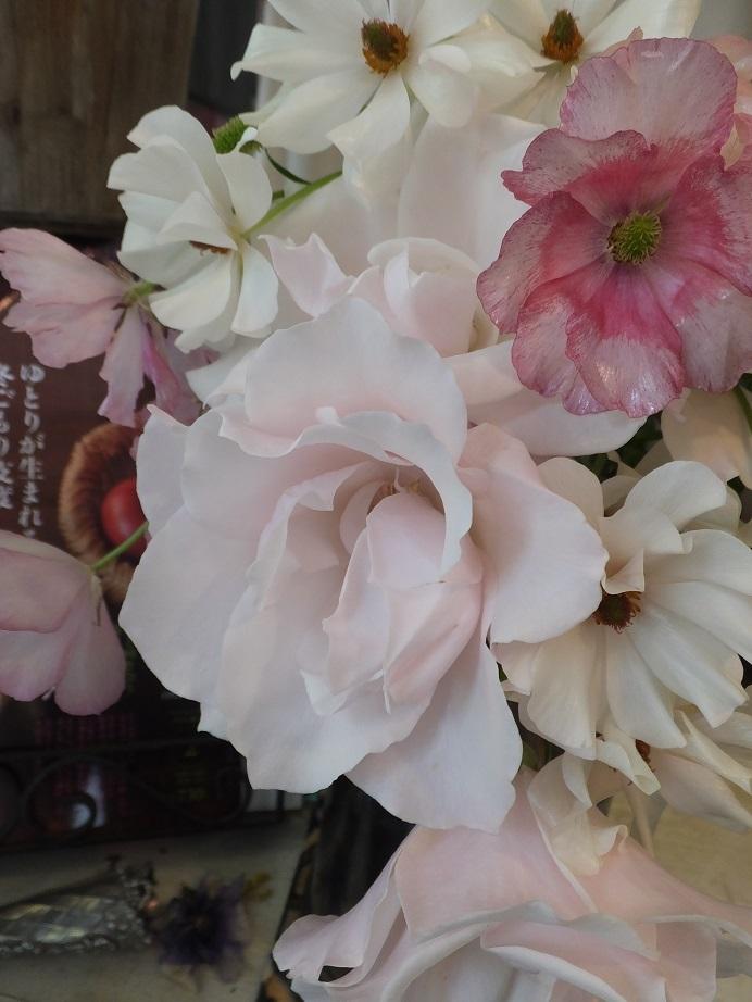 オークリーフ(花畑)_f0049672_09321004.jpg