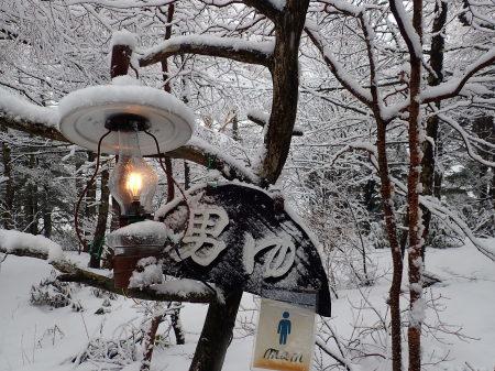 雪降りの朝_e0120896_07542395.jpg