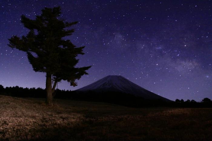 30年3月の富士(13)富士ヶ嶺の富士_e0344396_16525999.jpg
