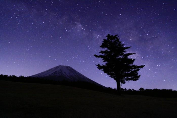 30年3月の富士(13)富士ヶ嶺の富士_e0344396_16530785.jpg