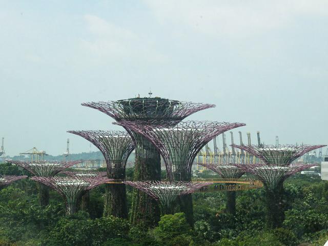 ガーデンズ・バイ・ザ・ベイ ~シンガポール植物園~_f0346196_13351274.jpg