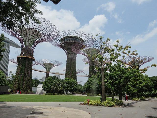 ガーデンズ・バイ・ザ・ベイ ~シンガポール植物園~_f0346196_13352768.jpg