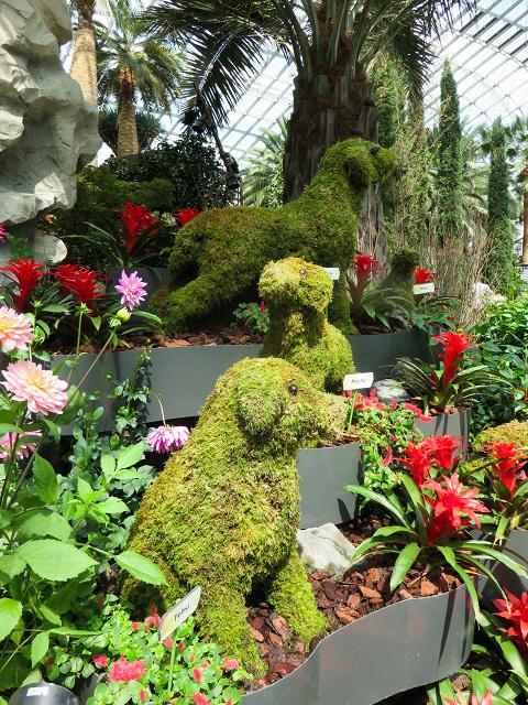 ガーデンズ・バイ・ザ・ベイ ~シンガポール植物園~_f0346196_13444864.jpg