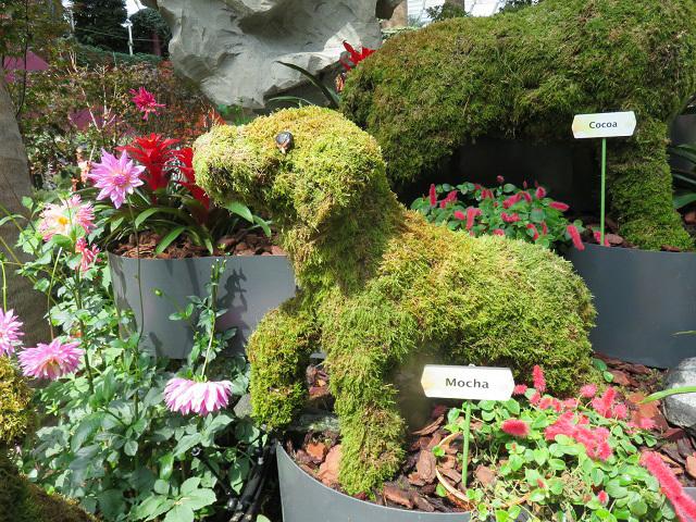 ガーデンズ・バイ・ザ・ベイ ~シンガポール植物園~_f0346196_13445471.jpg