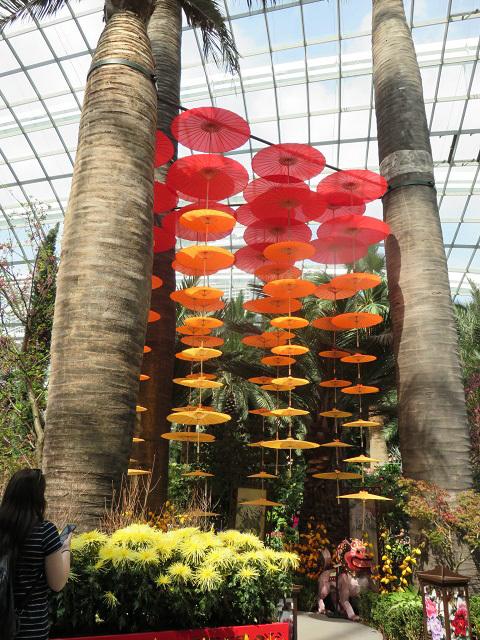 ガーデンズ・バイ・ザ・ベイ ~シンガポール植物園~_f0346196_13464560.jpg