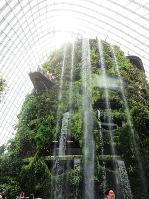 ガーデンズ・バイ・ザ・ベイ ~シンガポール植物園~_f0346196_13465136.jpg