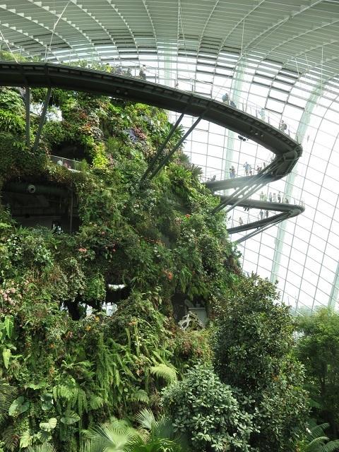 ガーデンズ・バイ・ザ・ベイ ~シンガポール植物園~_f0346196_13465640.jpg