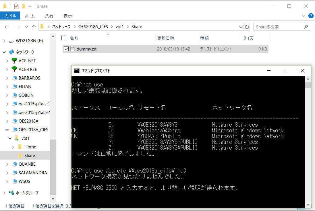 OES 2018 Linux で SMB ファイルサーバーのフォルダ容量制限(ディレクトリクォータ)_a0056607_13133842.jpg