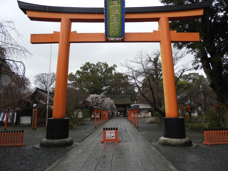 平野神社 魁(さきがけ)ざくら_e0048413_17294225.jpg