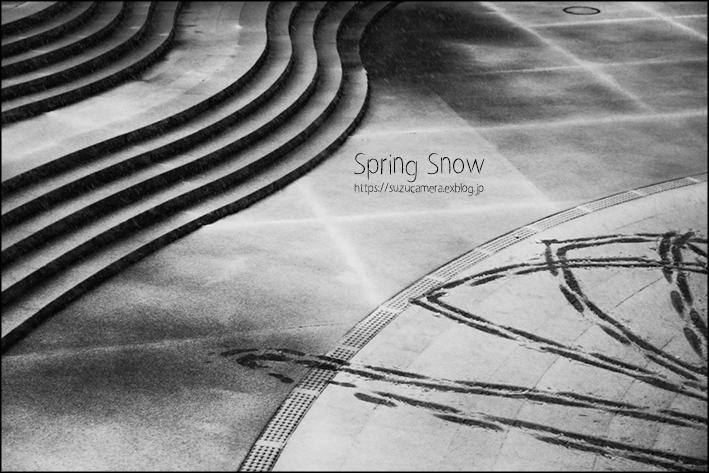 春の雪_f0100215_22241984.jpg