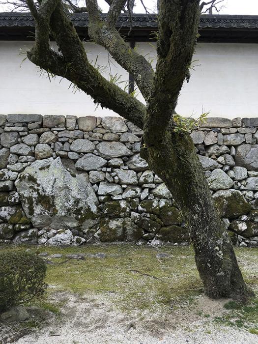 近江八幡、お土産はカステラのみみ_b0038919_12344356.jpg