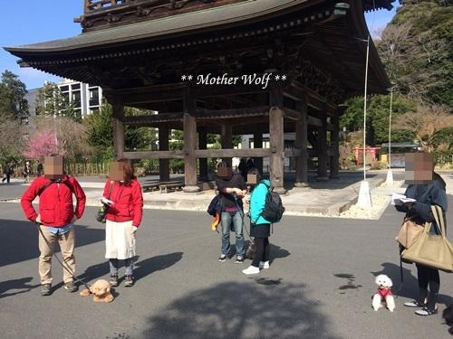 第24回マザーウルフ遠足 鎌倉天園レポート_e0191026_15130373.jpg