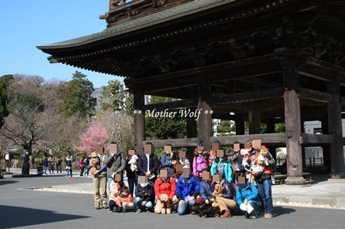 第24回マザーウルフ遠足 鎌倉天園レポート_e0191026_15341494.jpg