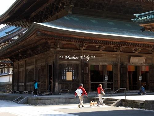 第24回マザーウルフ遠足 鎌倉天園レポート_e0191026_15593230.jpg