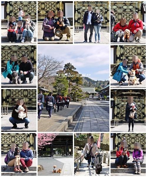 第24回マザーウルフ遠足 鎌倉天園レポート_e0191026_16001958.jpg