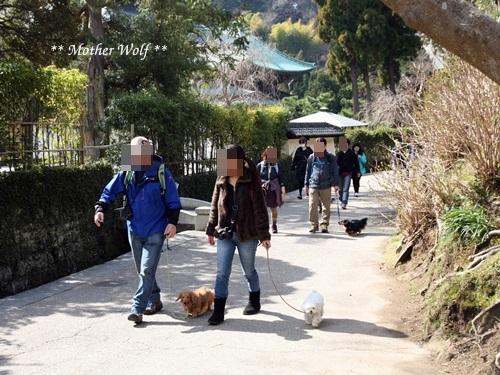 第24回マザーウルフ遠足 鎌倉天園レポート_e0191026_16331247.jpg