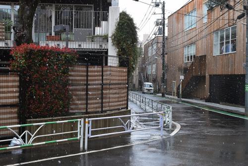 満季美香初個展「3」@ 初日_e0272050_14521379.jpg