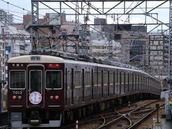 阪急7013F さくら看板_d0202264_20281493.jpg