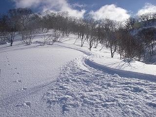石徹白スキーコースまとめ_e0064783_10111537.jpg