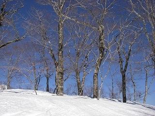 石徹白スキーコースまとめ_e0064783_10194487.jpg
