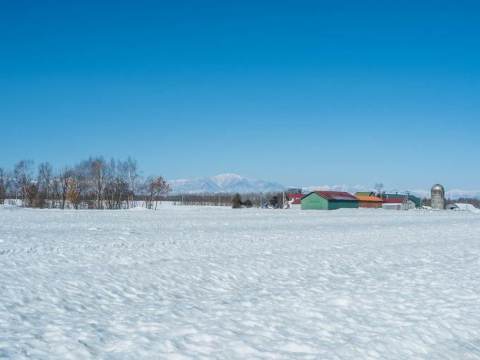 春の日差しが降り注ぐ畑・・でも雪どけはまだまだです。_f0276498_22541979.jpg