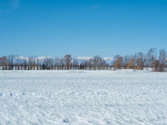 春の日差しが降り注ぐ畑・・でも雪どけはまだまだです。_f0276498_22561812.jpg