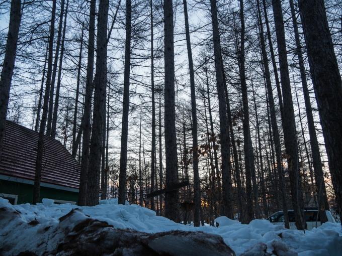 春の日差しが降り注ぐ畑・・でも雪どけはまだまだです。_f0276498_22591942.jpg