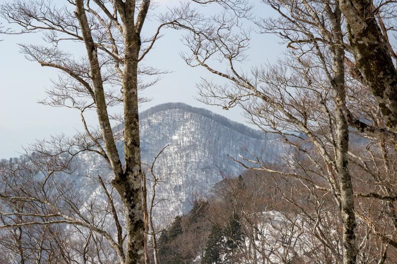 早春の台高山系 明神平・薊岳_b0244811_21350210.jpg