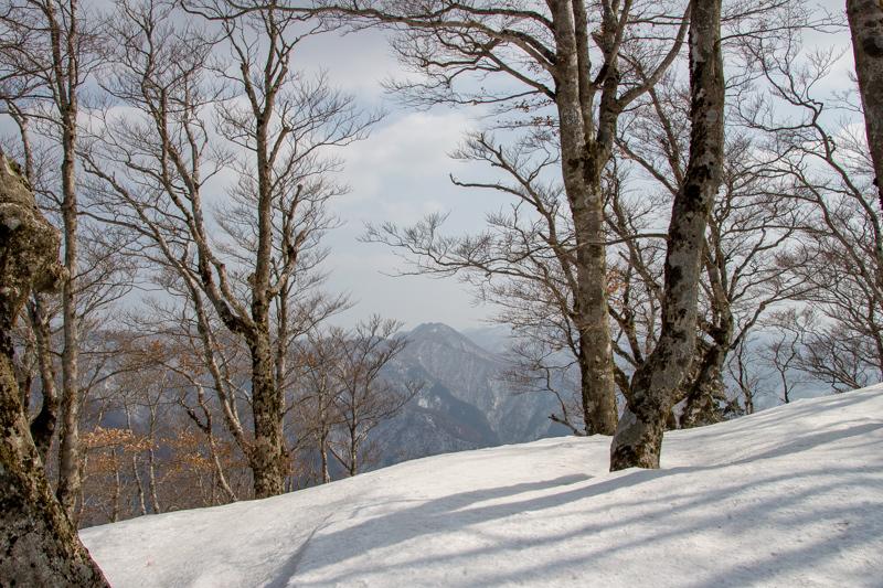 早春の台高山系 明神平・薊岳_b0244811_21393321.jpg
