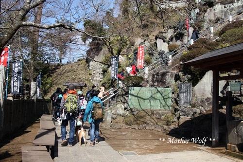 第24回マザーウルフ遠足 鎌倉天園レポート_e0191026_15420188.jpg