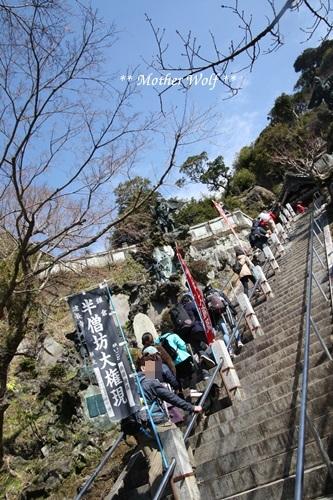 第24回マザーウルフ遠足 鎌倉天園レポート_e0191026_15423986.jpg