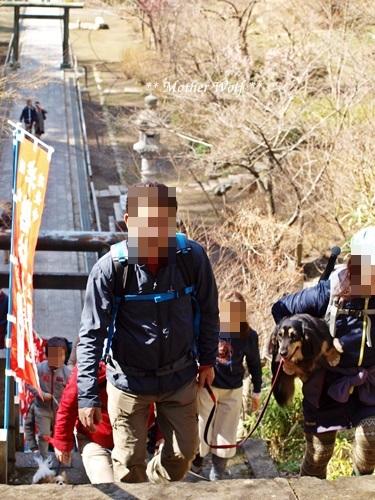 第24回マザーウルフ遠足 鎌倉天園レポート_e0191026_15595703.jpg