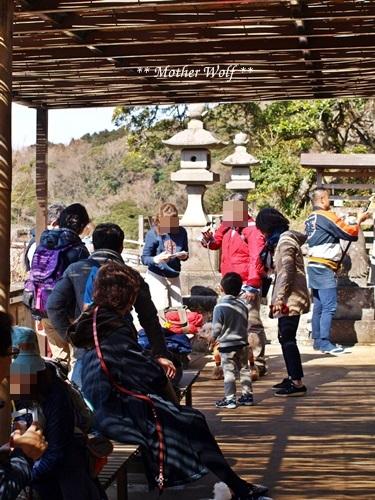 第24回マザーウルフ遠足 鎌倉天園レポート_e0191026_16122155.jpg