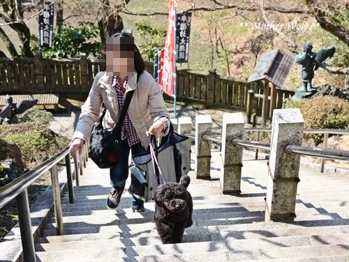 第24回マザーウルフ遠足 鎌倉天園レポート_e0191026_17581451.jpg