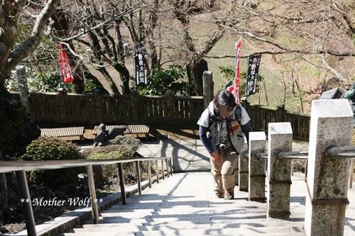 第24回マザーウルフ遠足 鎌倉天園レポート_e0191026_18061174.jpg