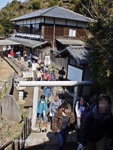 第24回マザーウルフ遠足 鎌倉天園レポート_e0191026_18212923.jpg
