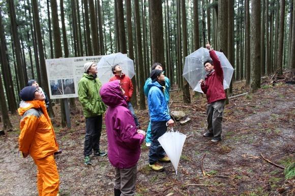 日本vs欧州調査レポート 02 現代林業のパイオニア_a0355629_14120538.jpg