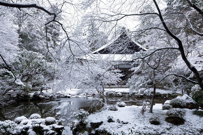 雪の京都2018 南禅院の雪の華_f0155048_20333388.jpg