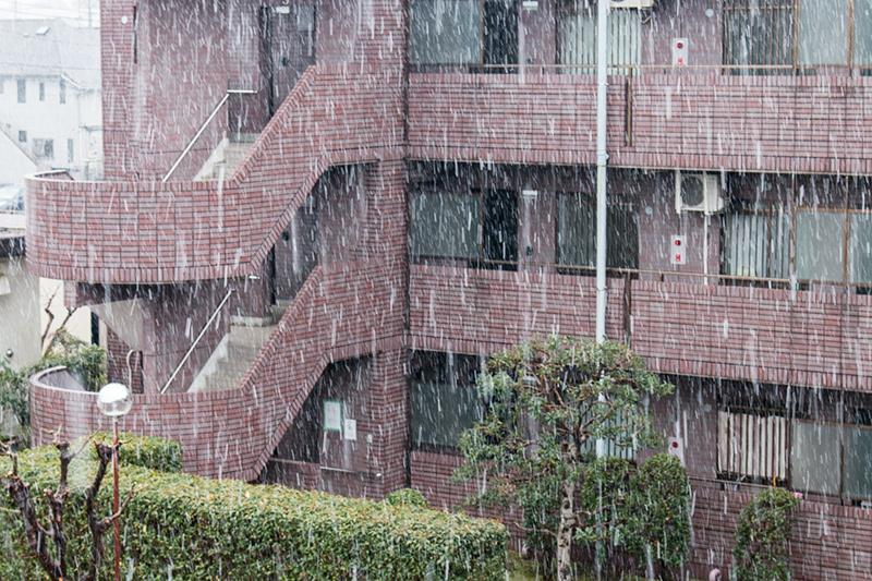 雪と雪見だいふく_a0003650_14531554.jpg