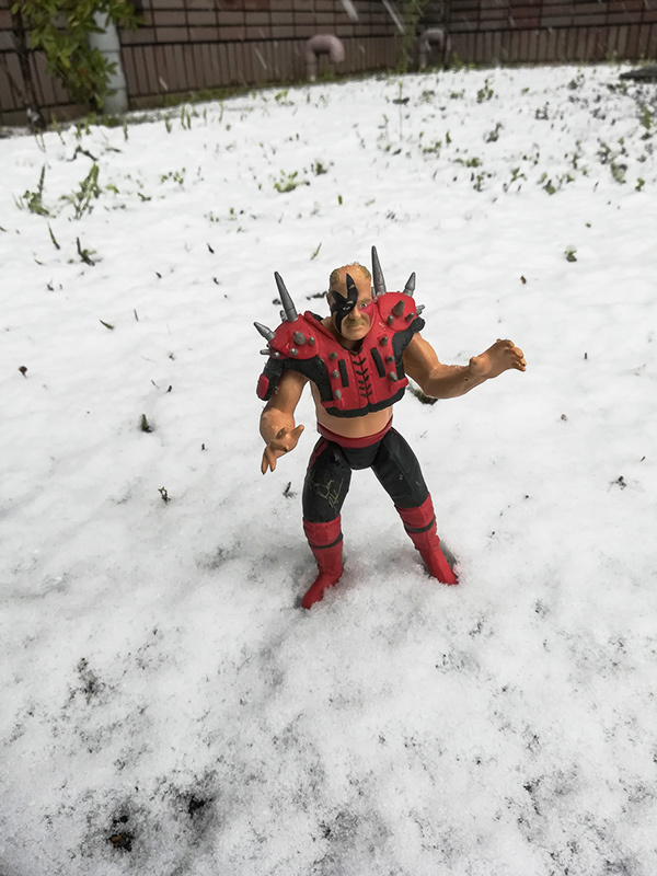 雪と雪見だいふく_a0003650_14535802.jpg
