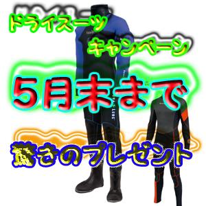 b0174352_15135613.jpg