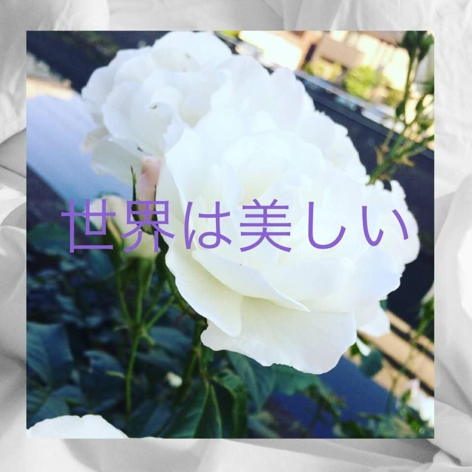 c0195362_18042236.jpeg