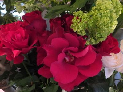 オークリーフ(桜と市川さんの薔薇)_f0049672_12130391.jpg