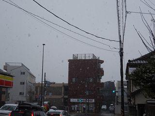 まさかの雪??_c0223192_20391990.jpg