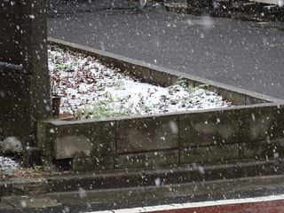 まさかの雪??_c0223192_20392215.jpg