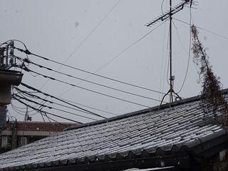 まさかの雪??_c0223192_20392795.jpg